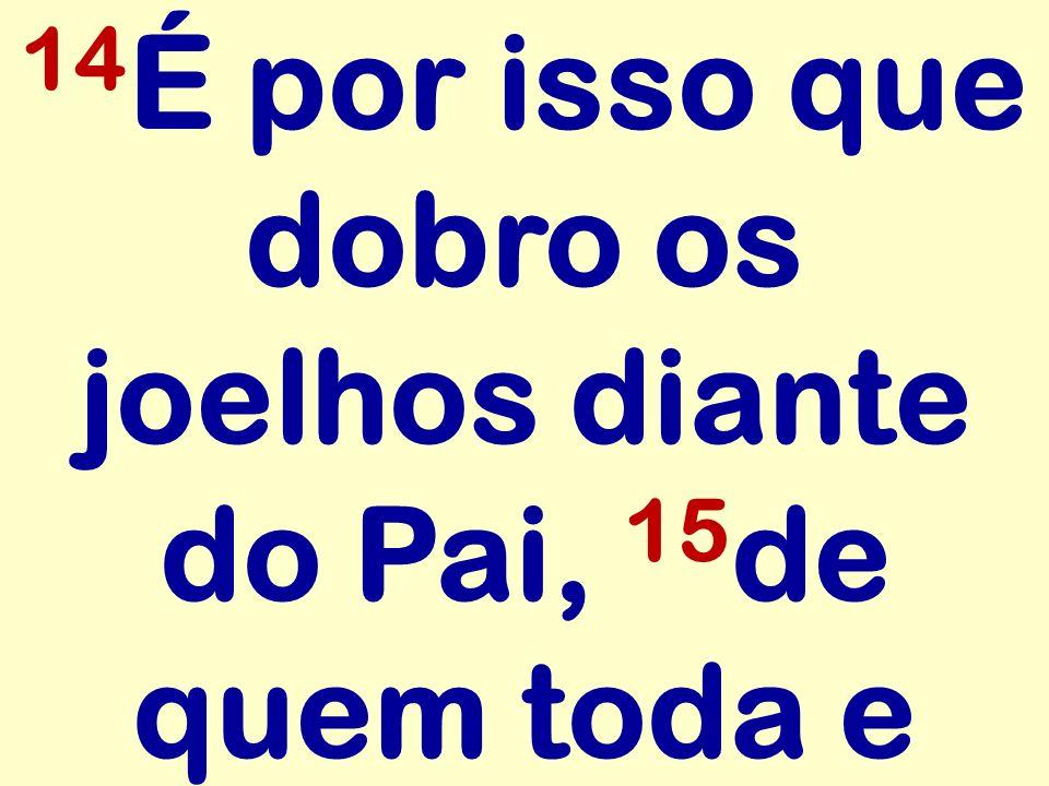 14 É por isso que dobro os joelhos diante do Pai, 15 de quem toda e