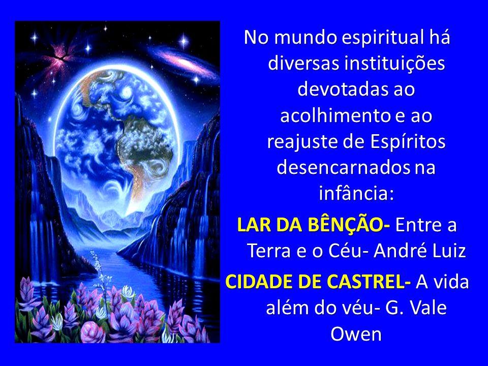 No mundo espiritual há diversas instituições devotadas ao acolhimento e ao reajuste de Espíritos desencarnados na infância: LAR DA BÊNÇÃO- Entre a Terra e o Céu- André Luiz CIDADE DE CASTREL- A vida além do véu- G.