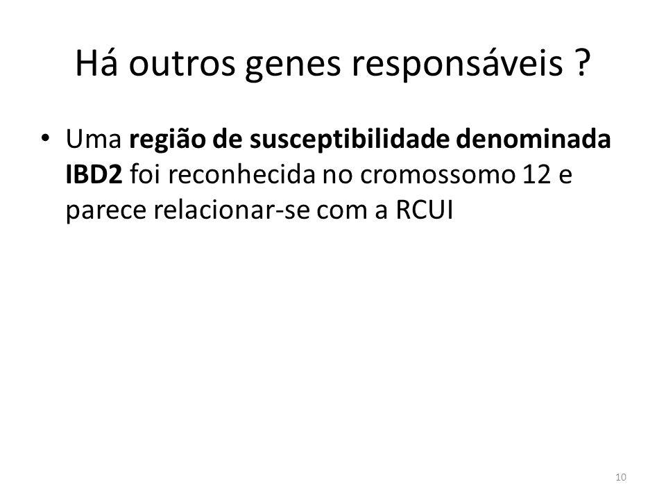 Há outros genes responsáveis ? Uma região de susceptibilidade denominada IBD2 foi reconhecida no cromossomo 12 e parece relacionar-se com a RCUI 10