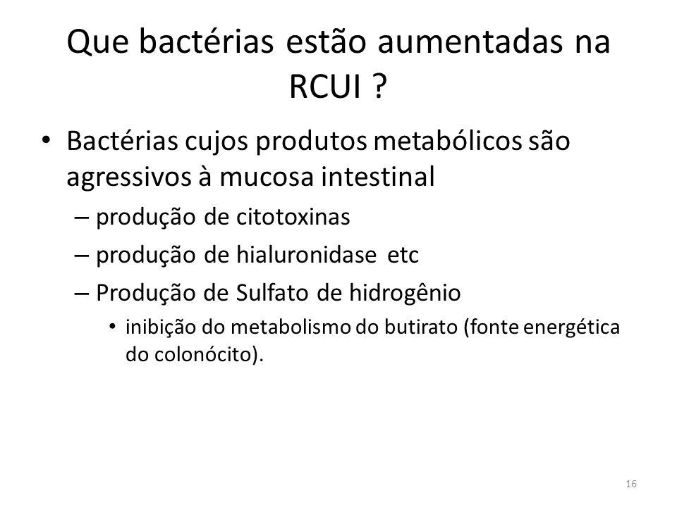 Que bactérias estão aumentadas na RCUI ? Bactérias cujos produtos metabólicos são agressivos à mucosa intestinal – produção de citotoxinas – produção
