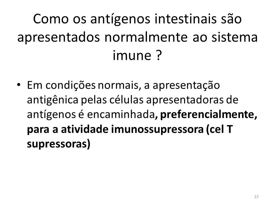 Como os antígenos intestinais são apresentados normalmente ao sistema imune ? Em condições normais, a apresentação antigênica pelas células apresentad