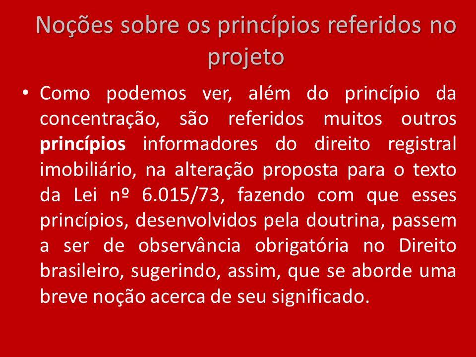 Noções sobre os princípios referidos no projeto Como podemos ver, além do princípio da concentração, são referidos muitos outros princípios informador