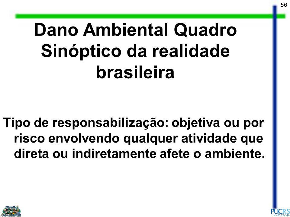 56 Dano Ambiental Quadro Sinóptico da realidade brasileira Tipo de responsabilização: objetiva ou por risco envolvendo qualquer atividade que direta o
