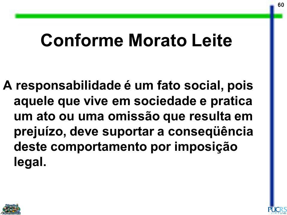 60 Conforme Morato Leite A responsabilidade é um fato social, pois aquele que vive em sociedade e pratica um ato ou uma omissão que resulta em prejuíz