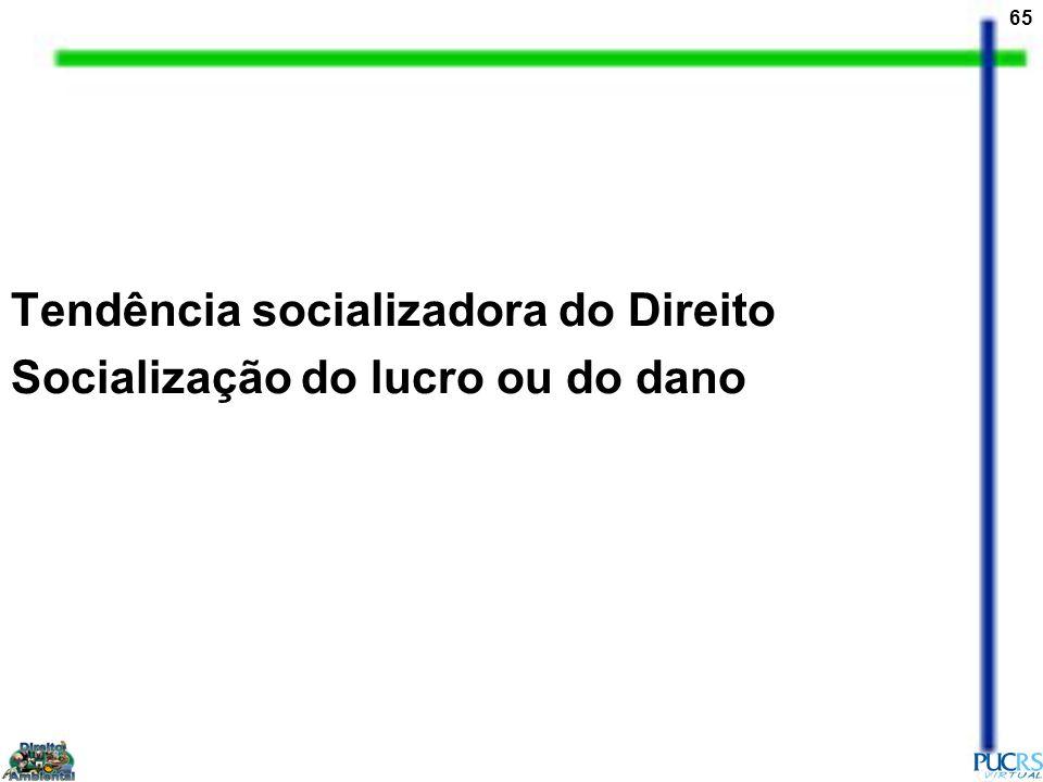 65 Tendência socializadora do Direito Socialização do lucro ou do dano