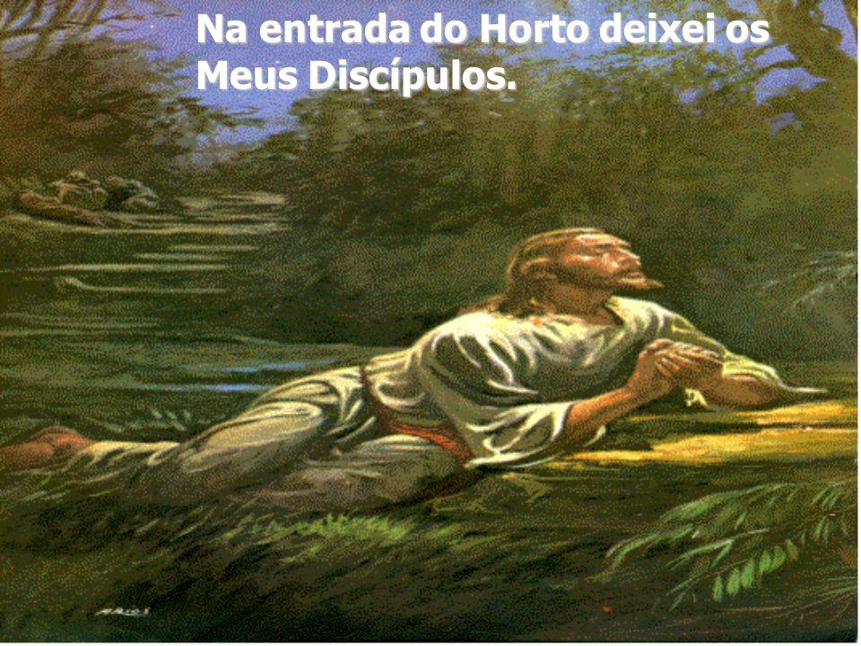 A salvação das almas começa aqui no Horto das Oliveiras através da Renúncia..., sofrimento..., reparação...
