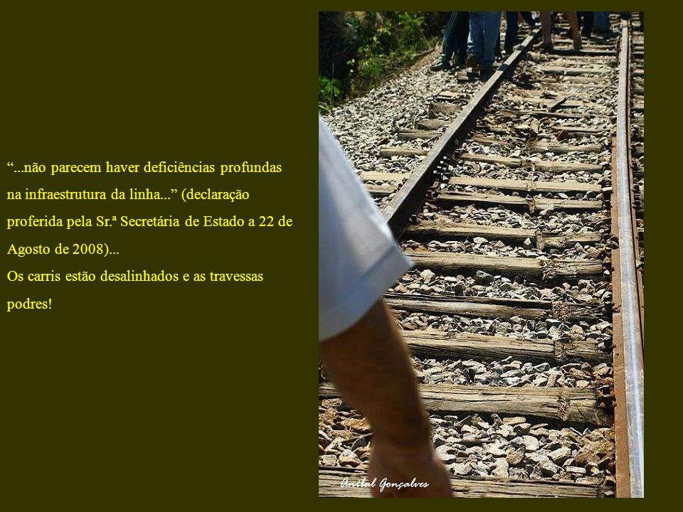 ...não parecem haver deficiências profundas na infraestrutura da linha... (declaração proferida pela Sr.ª Secretária de Estado a 22 de Agosto de 2008)