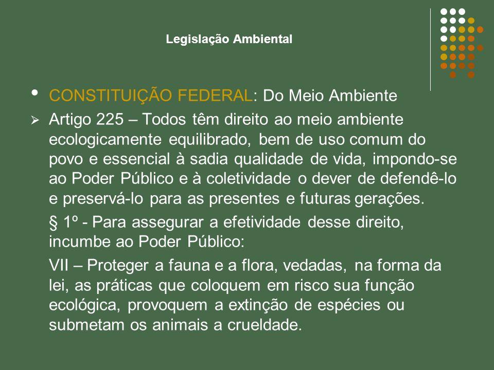 Legislação Ambiental CONSTITUIÇÃO FEDERAL: Do Meio Ambiente Artigo 225 – Todos têm direito ao meio ambiente ecologicamente equilibrado, bem de uso com
