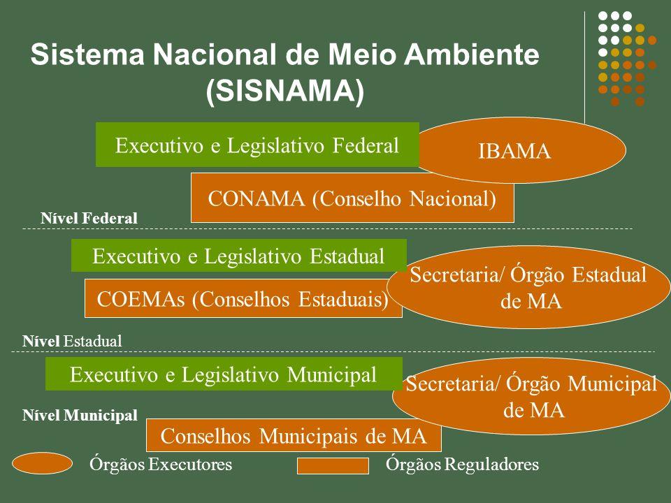 Sistema Nacional de Meio Ambiente (SISNAMA) CONAMA (Conselho Nacional) IBAMA COEMAs (Conselhos Estaduais) Secretaria/ Órgão Estadual de MA Conselhos M