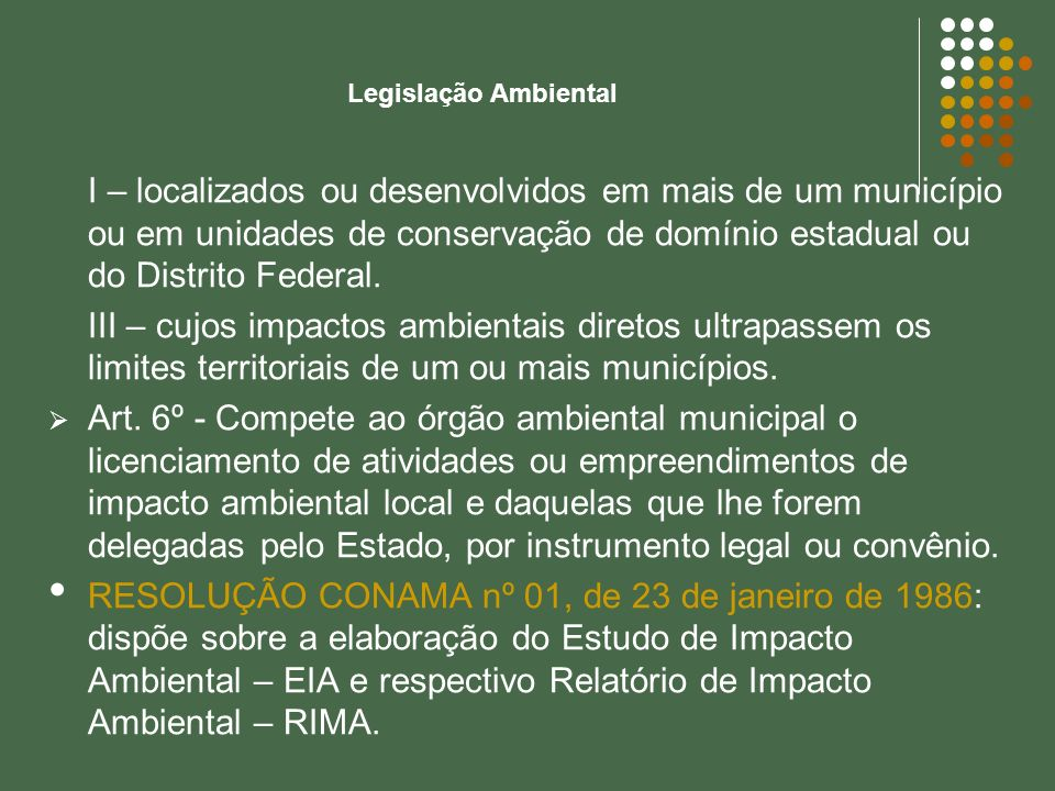 I – localizados ou desenvolvidos em mais de um município ou em unidades de conservação de domínio estadual ou do Distrito Federal. III – cujos impacto