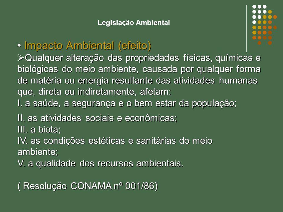 Legislação Ambiental Lei nº 6.938, de 31 de agosto de 1981: dispõe sobre a Política Nacional do Meio Ambiente, seus fins e mecanismos de formulação e aplicação, e dá outras providências.