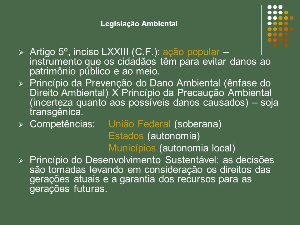 Legislação Ambiental Artigo 5º, inciso LXXIII (C.F.): ação popular – instrumento que os cidadãos têm para evitar danos ao patrimônio público e ao meio