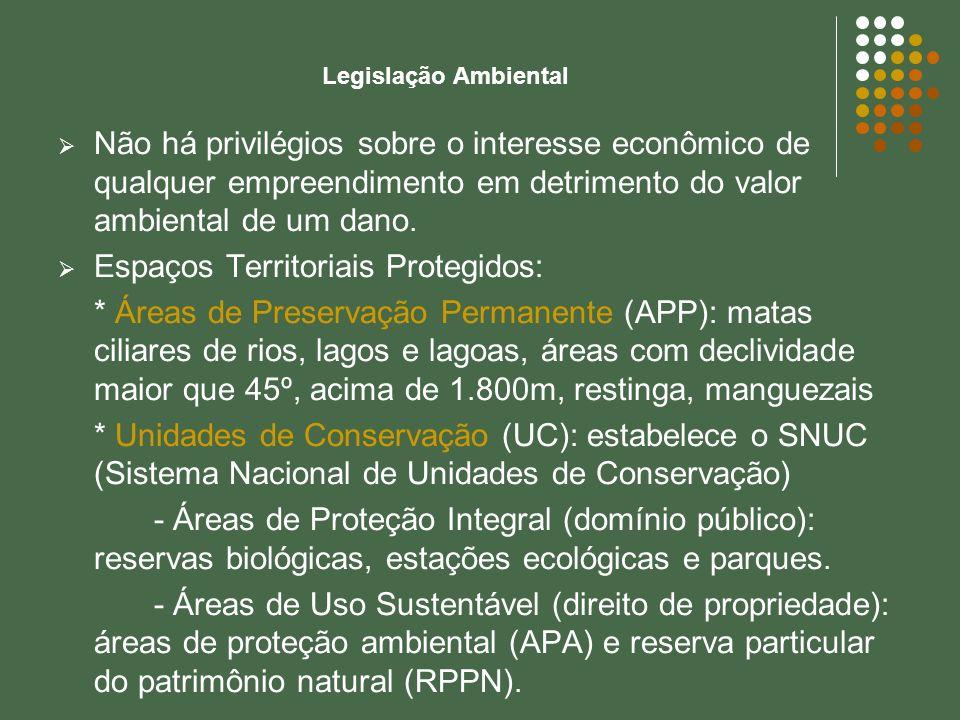 Legislação Ambiental Não há privilégios sobre o interesse econômico de qualquer empreendimento em detrimento do valor ambiental de um dano. Espaços Te