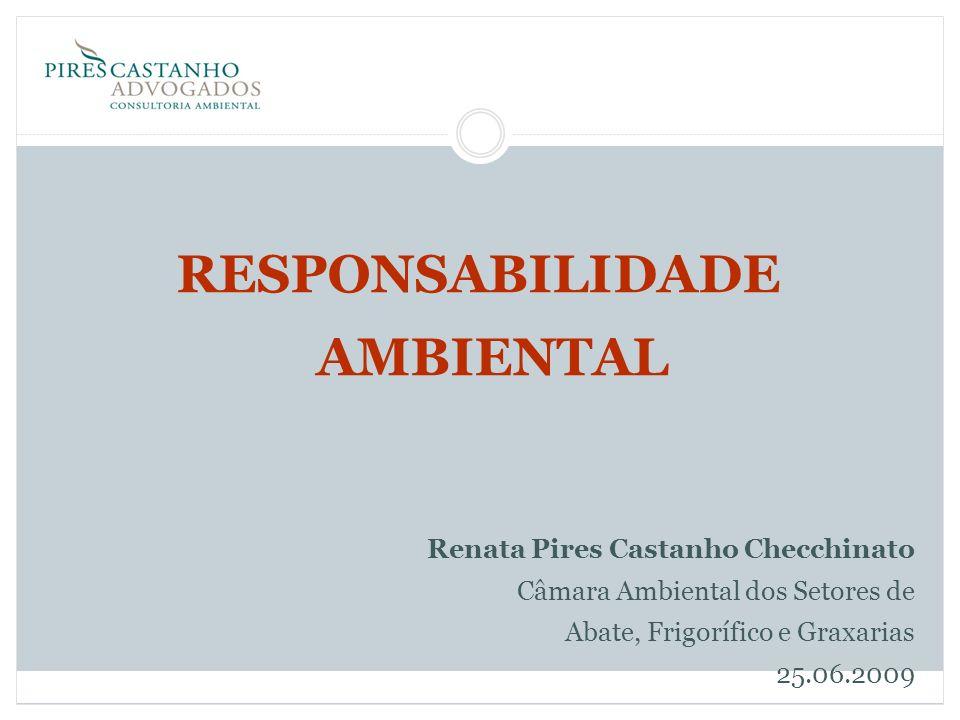 RESPONSABILIDADE AMBIENTAL Renata Pires Castanho Checchinato Câmara Ambiental dos Setores de Abate, Frigorífico e Graxarias 25.06.2009