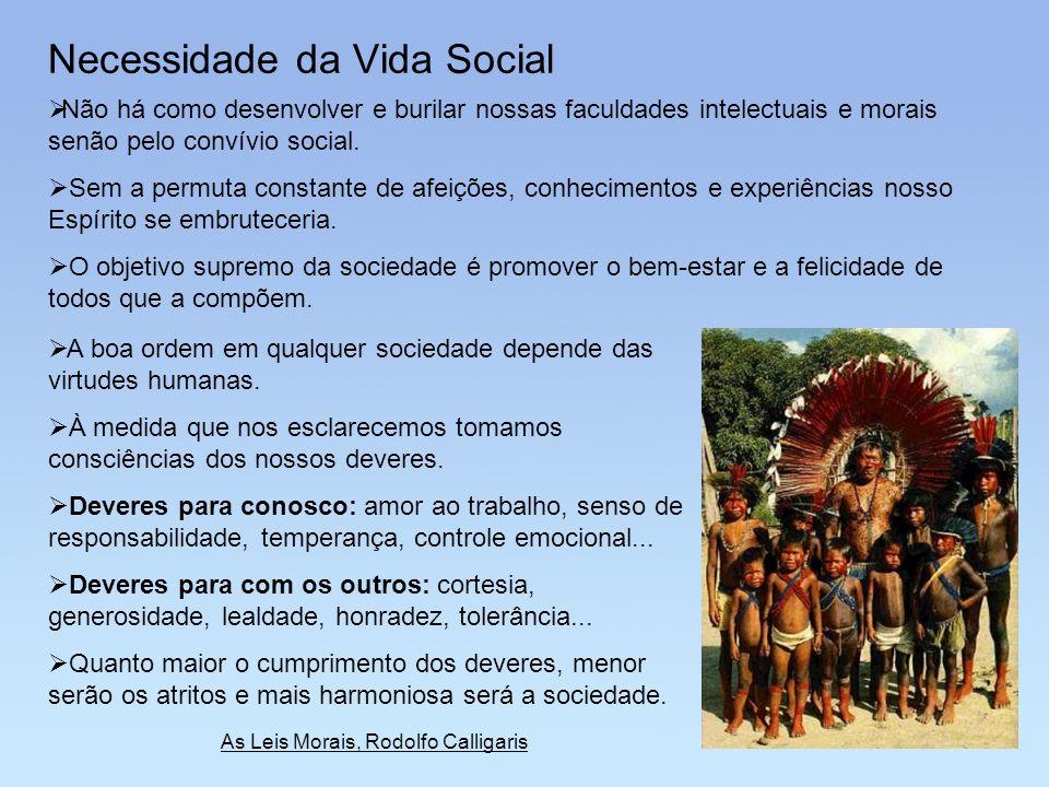 Necessidade da Vida Social Não há como desenvolver e burilar nossas faculdades intelectuais e morais senão pelo convívio social. Sem a permuta constan