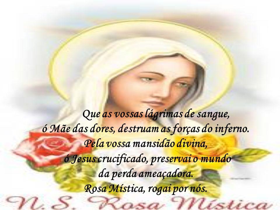 ORAÇÃO FINAL: Ó Maria, Mãe de amor, das dores e da misericórdia, nós vos suplicamos: uni as vossas suplicas às nossas a fim de que Jesus, vosso Divino