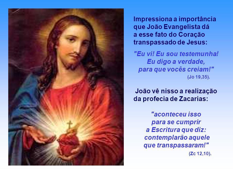 Impressiona a importância que João Evangelista dá a esse fato do Coração transpassado de Jesus: Eu vi.