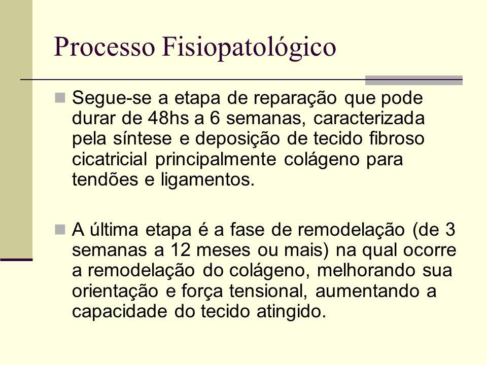 Processo Fisiopatológico Segue-se a etapa de reparação que pode durar de 48hs a 6 semanas, caracterizada pela síntese e deposição de tecido fibroso ci