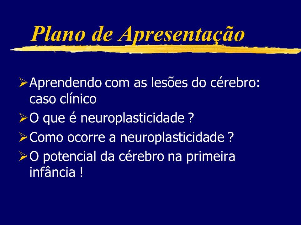Neuroplasticidade Jaderson Costa da Costa Pontifícia Universidade Católica do RS Faculdade de Medicina, Divisão de Neurologia Hospital São Lucas, Serv