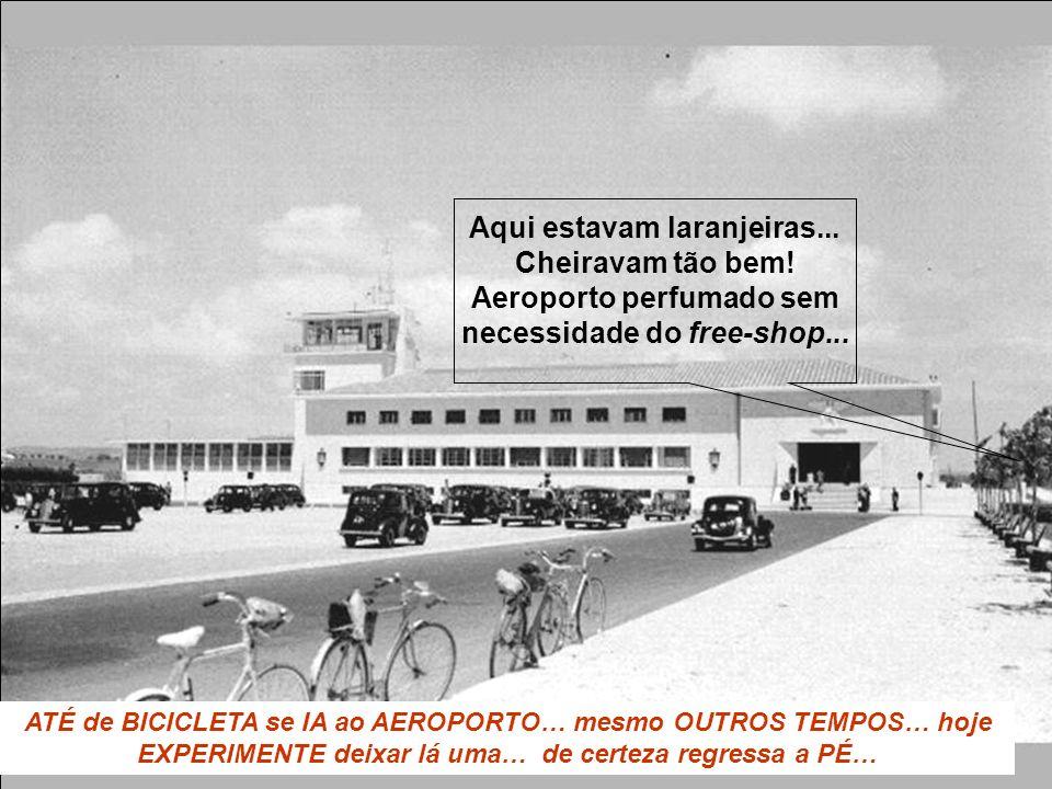 ATÉ de BICICLETA se IA ao AEROPORTO… mesmo OUTROS TEMPOS… hoje EXPERIMENTE deixar lá uma… de certeza regressa a PÉ… Aqui estavam laranjeiras... Cheira