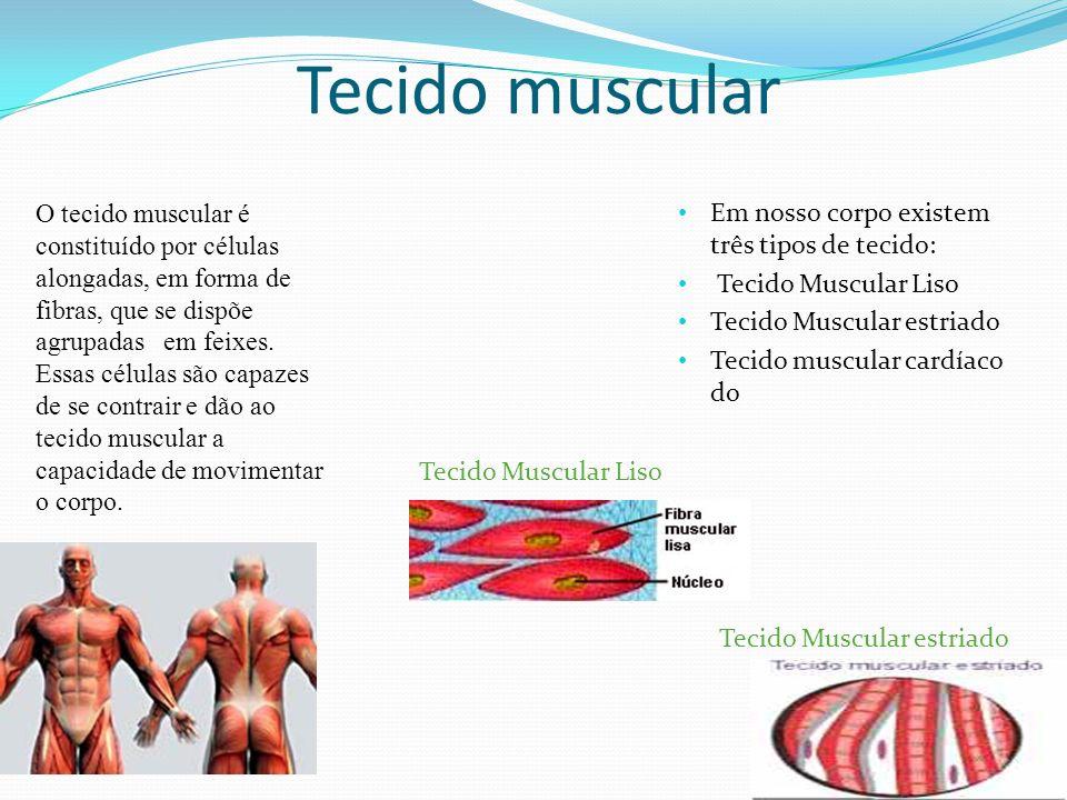 Tecido muscular estriado É capaz de contrações rápidas, com contrações voluntarias (sob o controle da vontade), denominado esquelético, por se prender aos ossos.