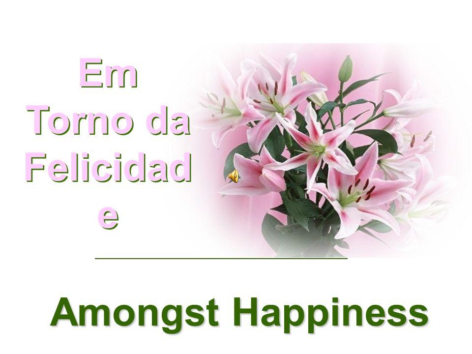 Em Torno da Felicidad e Amongst Happiness