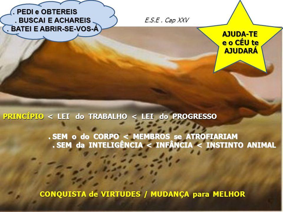 AJUDA-TE e o CÉU te e o CÉU te AJUDARÁ AJUDARÁ E.S.E. Cap XXV PRINCÍPIO < LEI do TRABALHO < LEI do PROGRESSO CONQUISTA de VIRTUDES / MUDANÇA para MELH