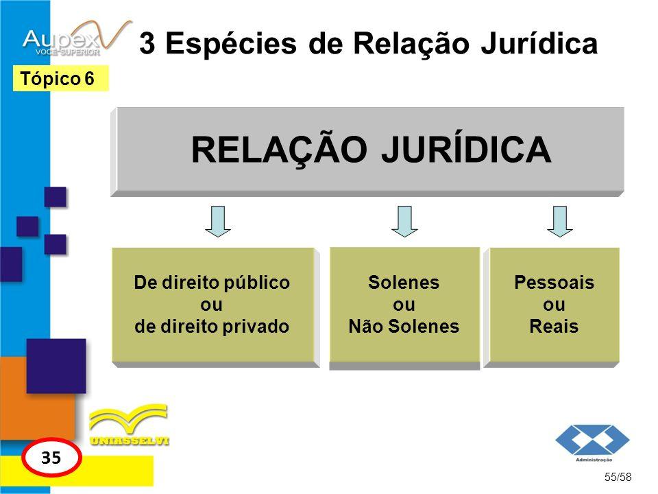 3 Espécies de Relação Jurídica RELAÇÃO JURÍDICA 55/58 Tópico 6 35 De direito público ou de direito privado Solenes ou Não Solenes Pessoais ou Reais