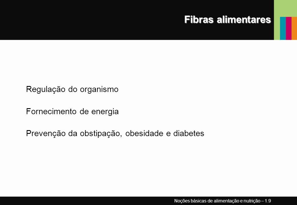 Fibras alimentares Regulação do organismo Fornecimento de energia Prevenção da obstipação, obesidade e diabetes Noções básicas de alimentação e nutriç