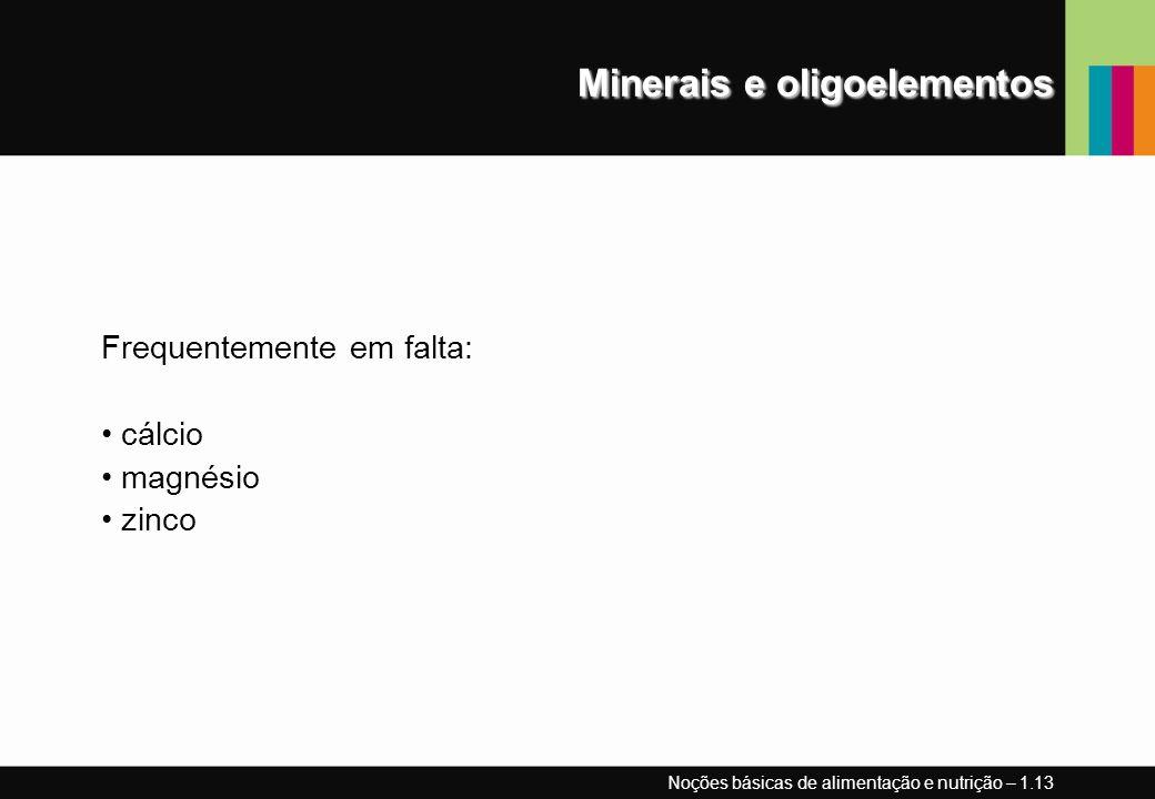 Minerais e oligoelementos Frequentemente em falta: cálcio magnésio zinco Noções básicas de alimentação e nutrição – 1.13