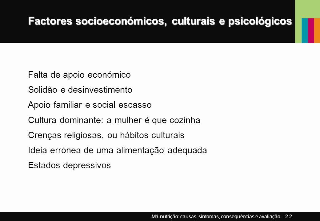 Factores socioeconómicos, culturais e psicológicos Falta de apoio económico Solidão e desinvestimento Apoio familiar e social escasso Cultura dominant
