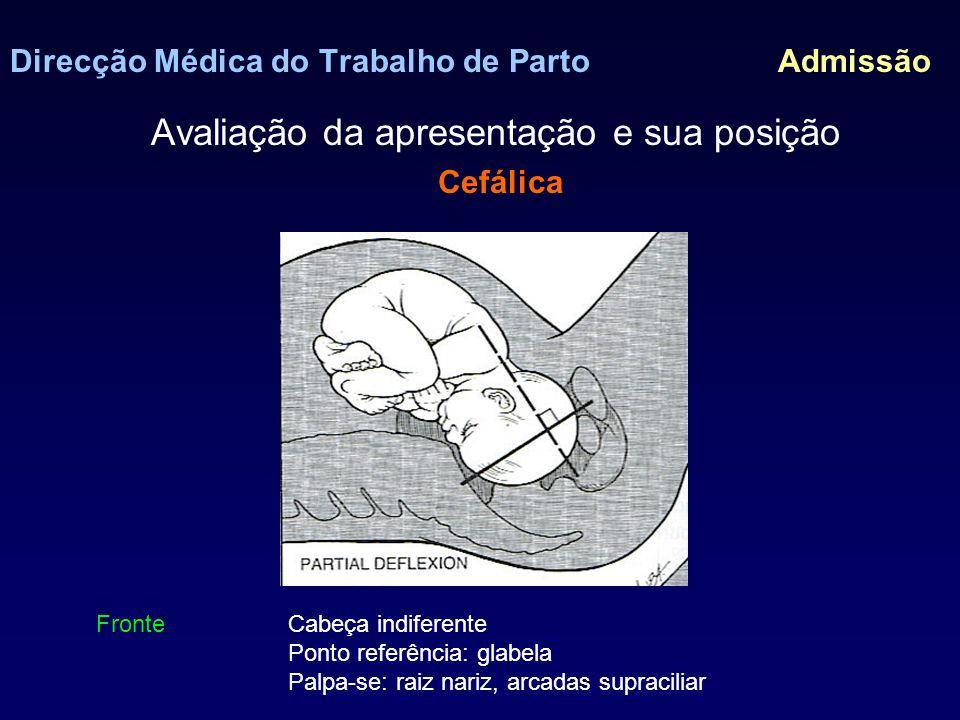Direcção Médica do Trabalho de Parto Admissão Avaliação da apresentação e sua posição Cefálica Face Cabeça desflectida.