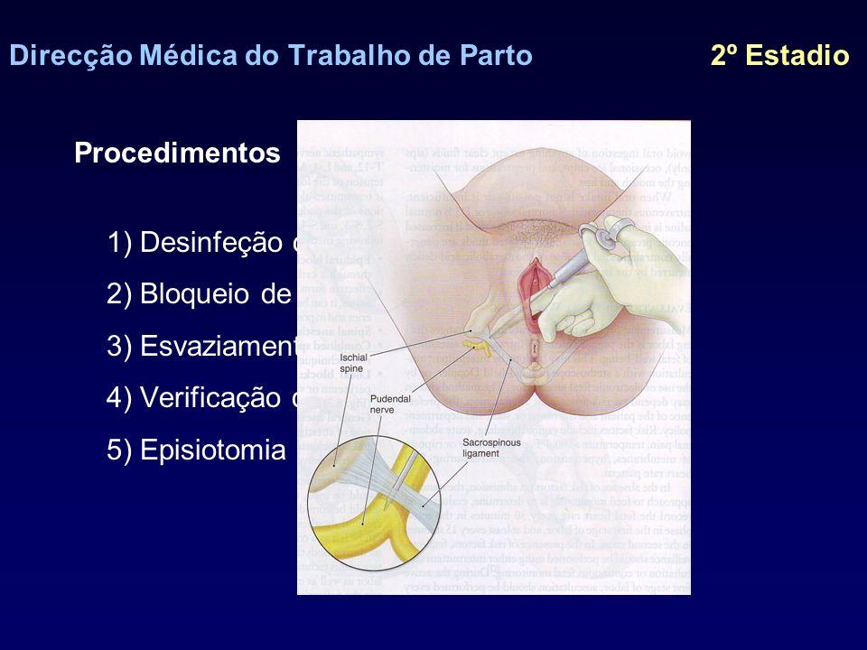 Direcção Médica do Trabalho de Parto 2º Estadio Procedimentos 1) Desinfeção do perineo 2) Bloqueio de pudendos 3) Esvaziamento vesical 4) Verificação de posição e variedade 5) Episiotomia