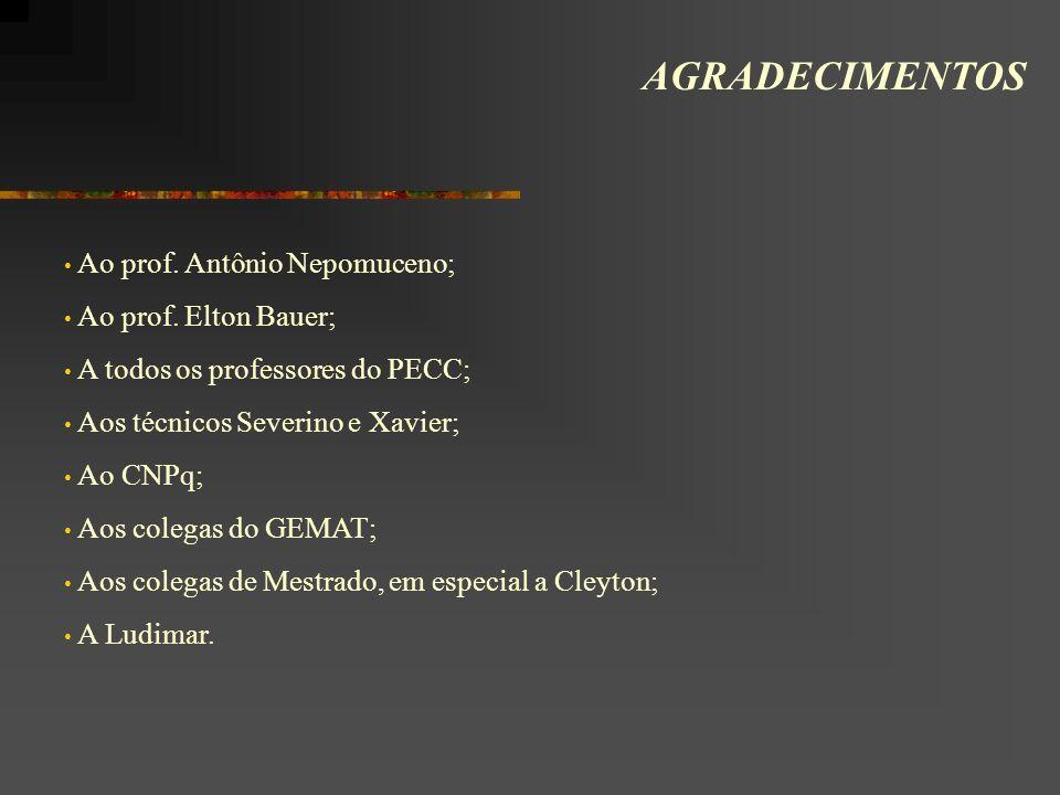 AGRADECIMENTOS Ao prof. Antônio Nepomuceno; Ao prof. Elton Bauer; A todos os professores do PECC; Aos técnicos Severino e Xavier; Ao CNPq; Aos colegas