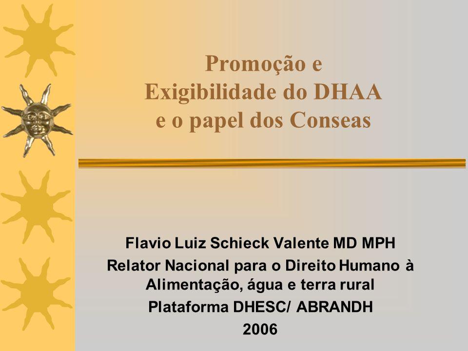 Promoção e Exigibilidade do DHAA e o papel dos Conseas Flavio Luiz Schieck Valente MD MPH Relator Nacional para o Direito Humano à Alimentação, água e terra rural Plataforma DHESC/ ABRANDH 2006