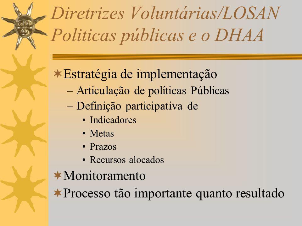 Diretrizes Voluntárias/LOSAN Politicas públicas e o DHAA Estratégia de implementação –Articulação de políticas Públicas –Definição participativa de Indicadores Metas Prazos Recursos alocados Monitoramento Processo tão importante quanto resultado