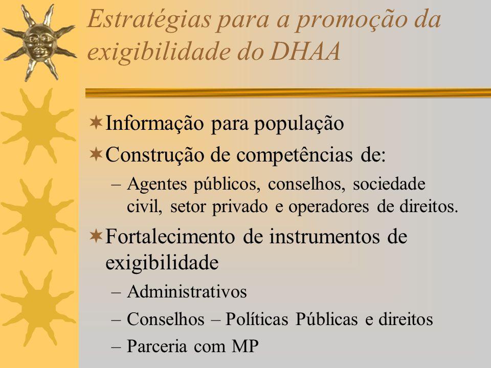 Estratégias para a promoção da exigibilidade do DHAA Informação para população Construção de competências de: –Agentes públicos, conselhos, sociedade civil, setor privado e operadores de direitos.