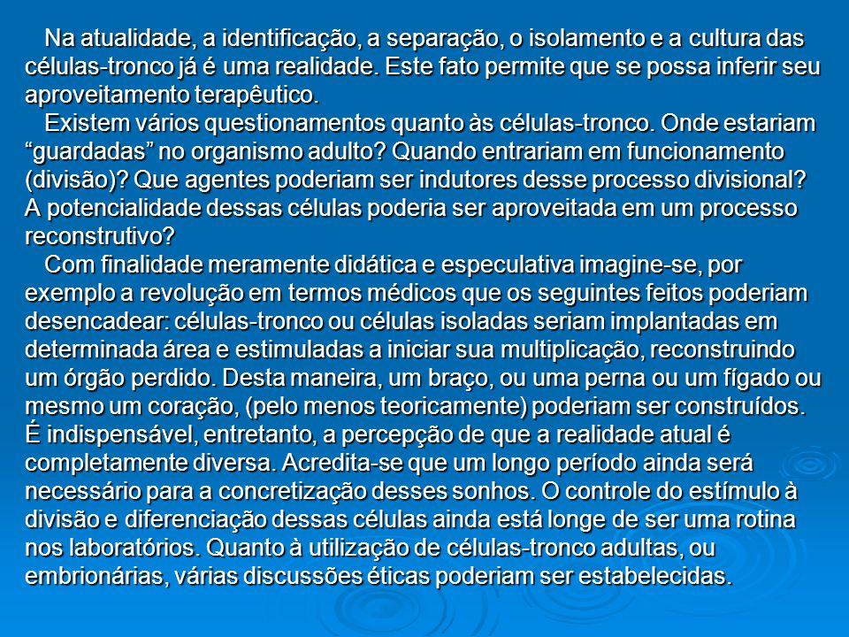 Na atualidade, a identificação, a separação, o isolamento e a cultura das Na atualidade, a identificação, a separação, o isolamento e a cultura das cé