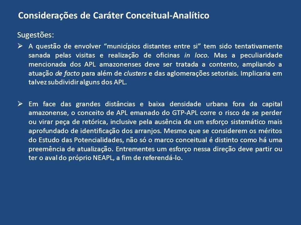 Considerações de Caráter Conceitual-Analítico Sugestões: A questão de envolver municípios distantes entre si tem sido tentativamente sanada pelas visi