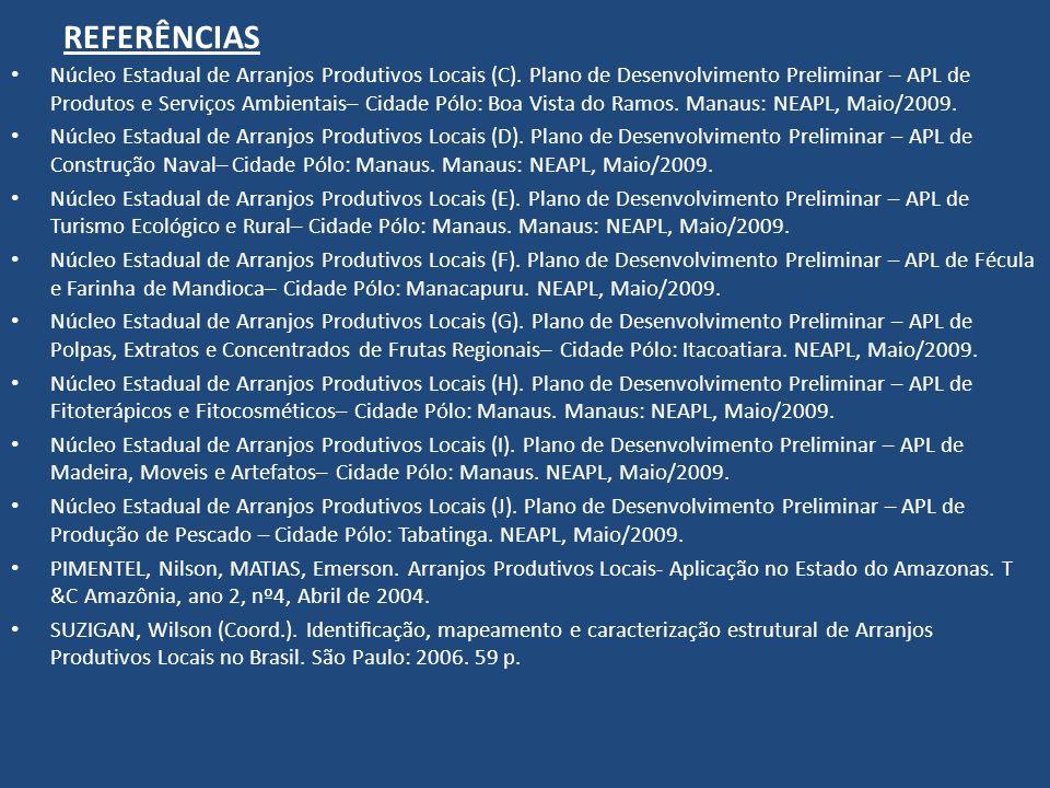REFERÊNCIAS Núcleo Estadual de Arranjos Produtivos Locais (C). Plano de Desenvolvimento Preliminar – APL de Produtos e Serviços Ambientais– Cidade Pól