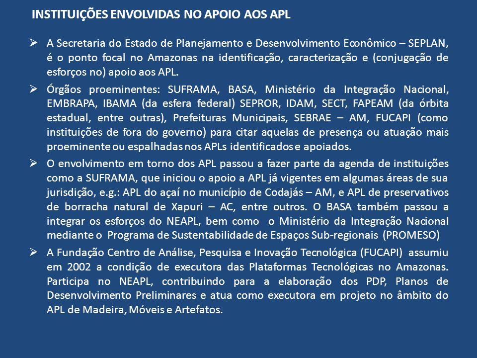 INSTITUIÇÕES ENVOLVIDAS NO APOIO AOS APL A Secretaria do Estado de Planejamento e Desenvolvimento Econômico – SEPLAN, é o ponto focal no Amazonas na identificação, caracterização e (conjugação de esforços no) apoio aos APL.