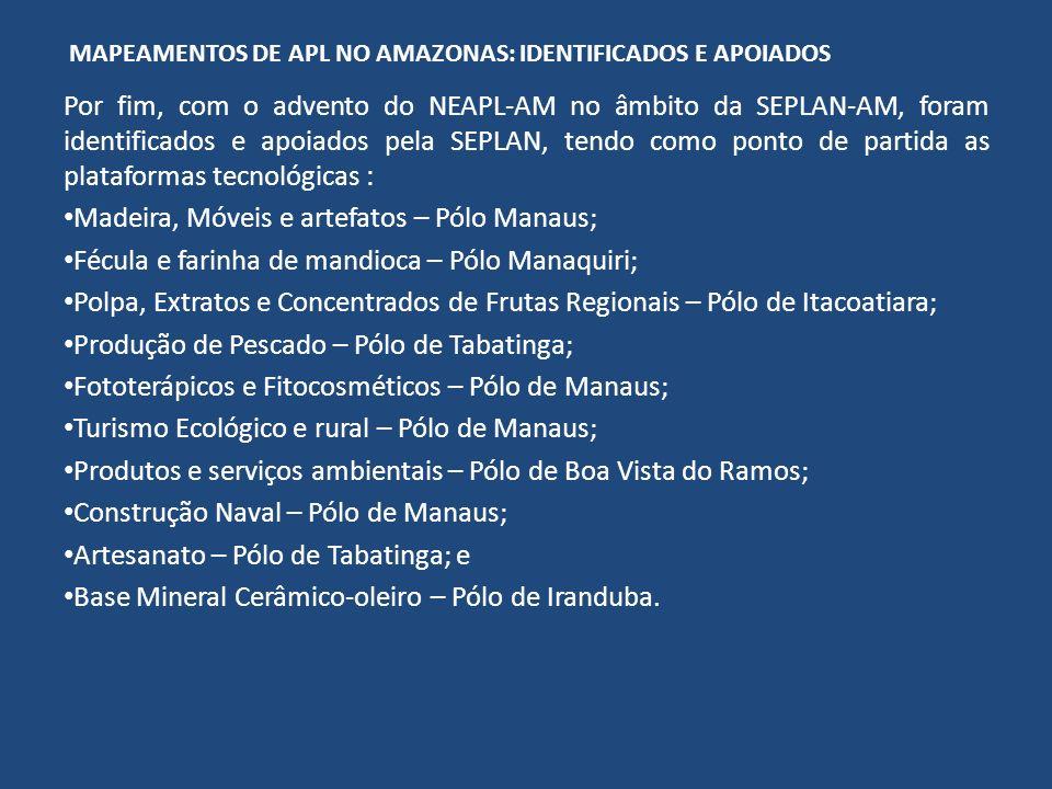 MAPEAMENTOS DE APL NO AMAZONAS: IDENTIFICADOS E APOIADOS Por fim, com o advento do NEAPL-AM no âmbito da SEPLAN-AM, foram identificados e apoiados pel