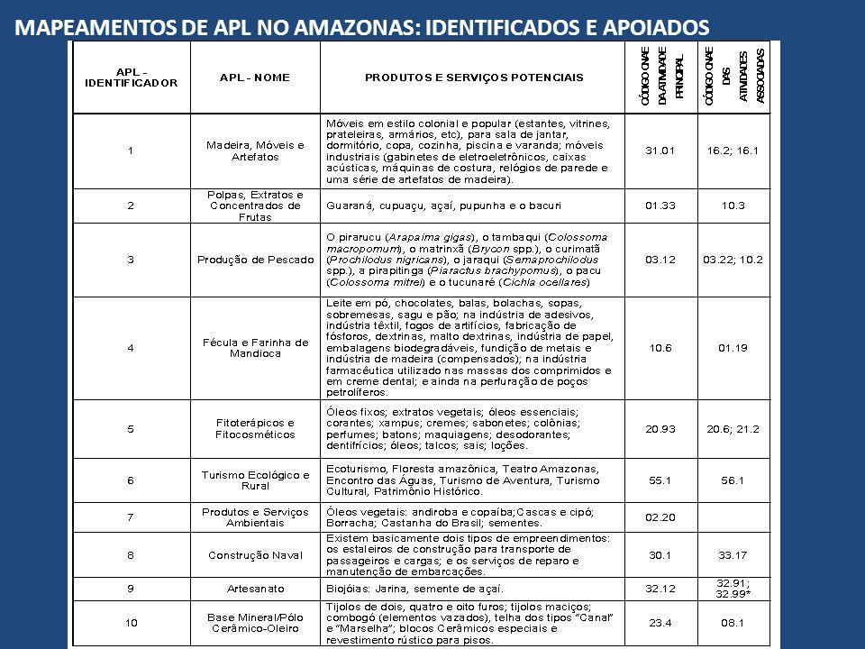 MAPEAMENTOS DE APL NO AMAZONAS: IDENTIFICADOS E APOIADOS
