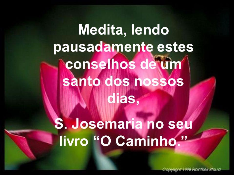Medita, lendo pausadamente estes conselhos de um santo dos nossos dias, S.