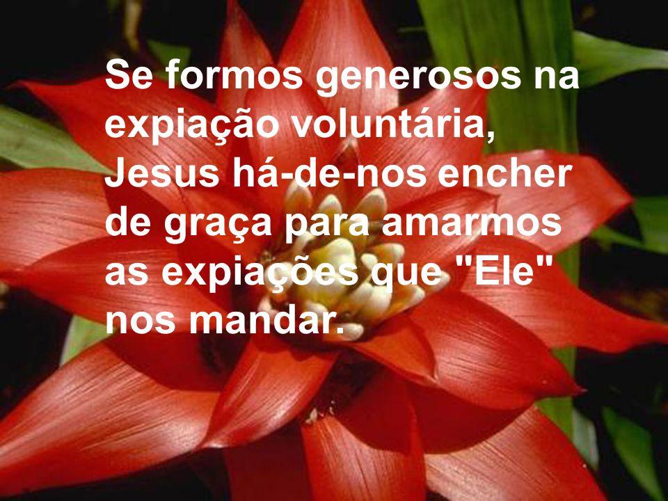 Se formos generosos na expiação voluntária, Jesus há-de-nos encher de graça para amarmos as expiações que Ele nos mandar.