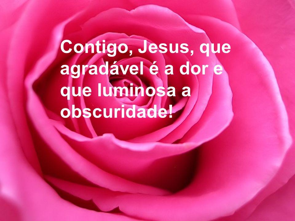 Contigo, Jesus, que agradável é a dor e que luminosa a obscuridade!