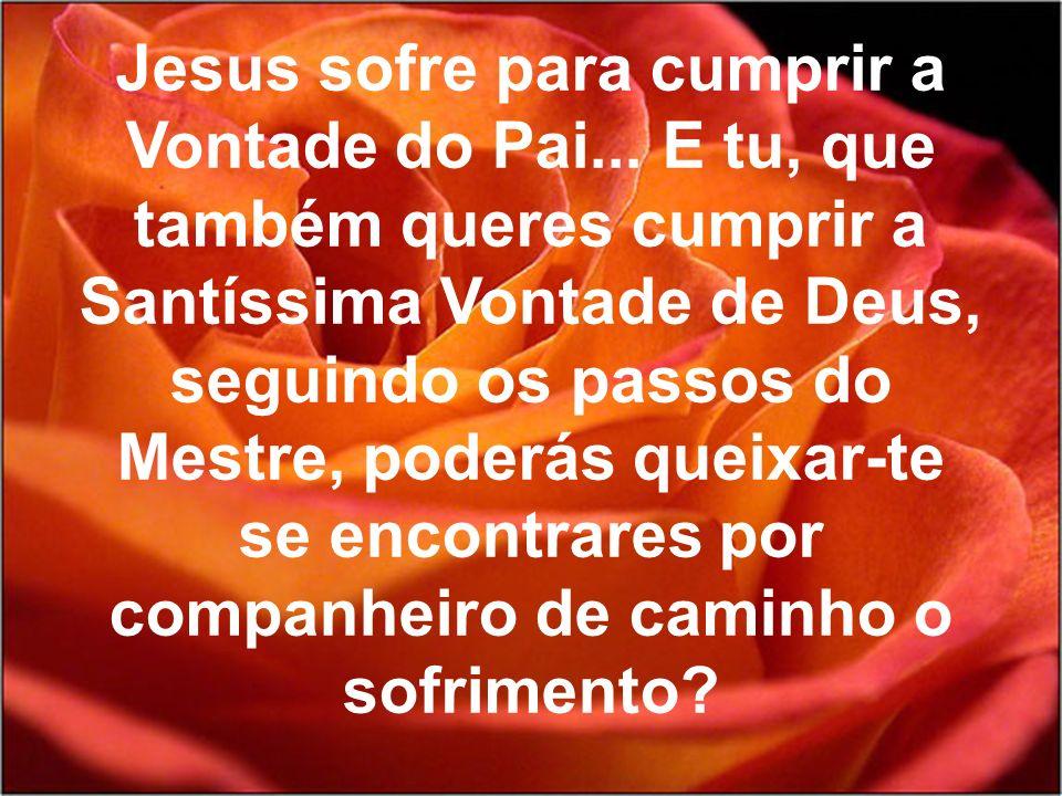 Jesus sofre para cumprir a Vontade do Pai...