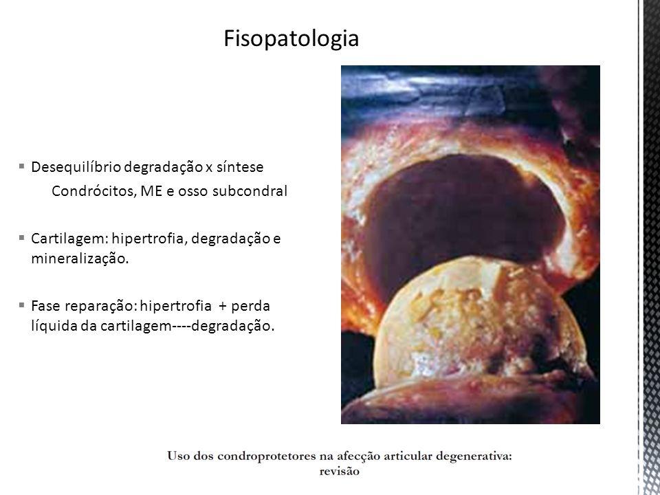 Reparação: Condrócitos produzem em gd qtd: Proteoglicanos e colágeno tipo II Superprodução de componentes da ME Perda líquida: reparo ineficaz Progressão: >metaloproteinases <ME Degradação >recep IL-1, TNF <TGF, BRII Líq sinovial: >macrófagos, linf T, Ig, complemento, cotocinas inflamatórias Inflamação sonovial, fibrose
