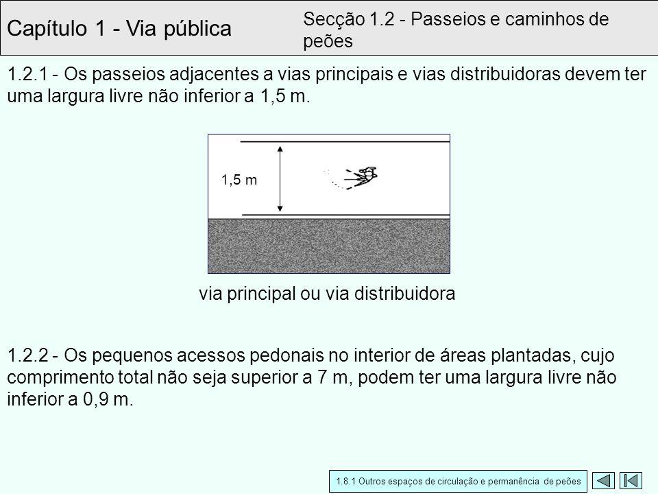 Capítulo 1 - Via pública Secção 1.2 - Passeios e caminhos de peões 1.2.2 - Os pequenos acessos pedonais no interior de áreas plantadas, cujo comprimen
