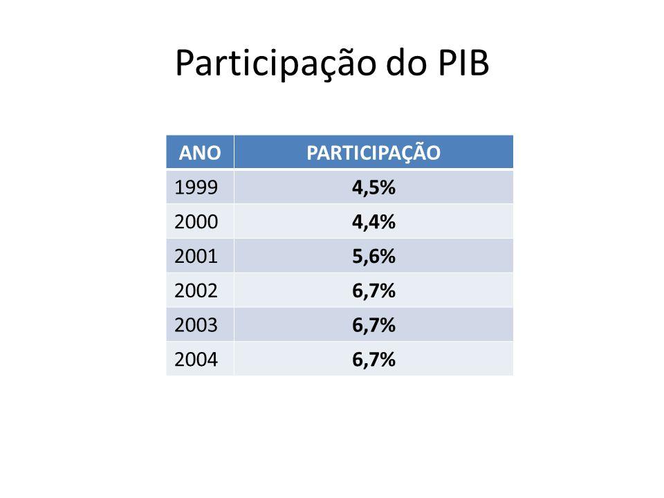 Participação do PIB ANOPARTICIPAÇÃO 19994,5% 20004,4% 20015,6% 20026,7% 20036,7% 20046,7%